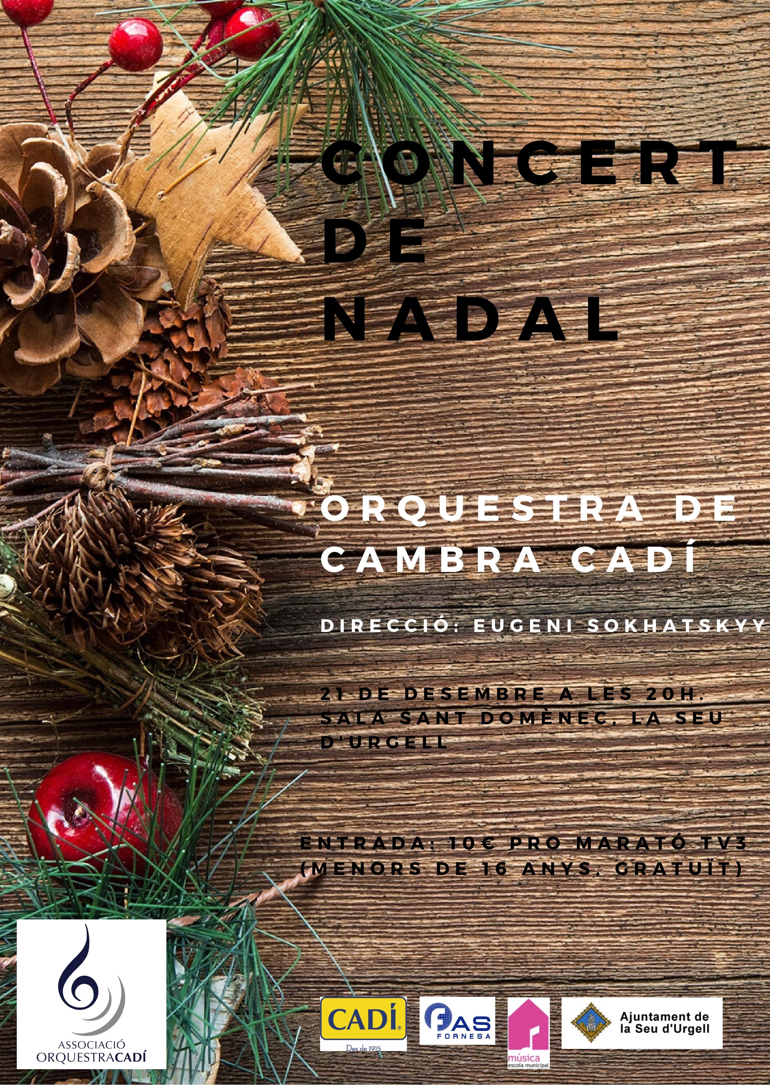 CONCERT DE NADAL_page-0001